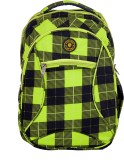 Pulse 2538Printed 29 L Backpack (Green)