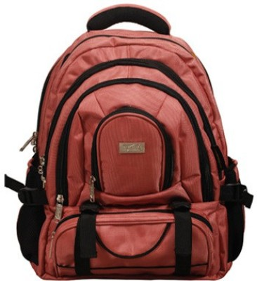 Cosmo Accessability 3.8 L Laptop Backpack