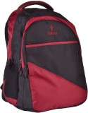 Istorm SPARROW MARRON 25 L Backpack (Mar...