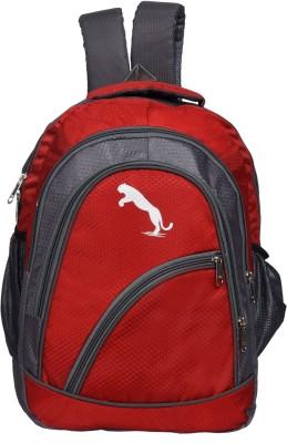 Hanu MNBG16RED 20 L Laptop Backpack