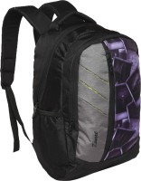 Zwart SERINT 25 L Medium Backpack(Black, Grey)