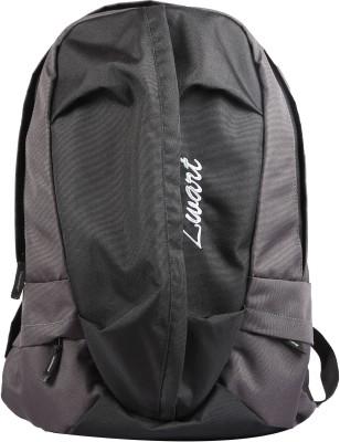Zwart 214108 20 L Free Size Laptop Backpack(Grey)