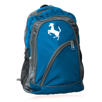 EG 15.6 inch Expandable Laptop Backpack
