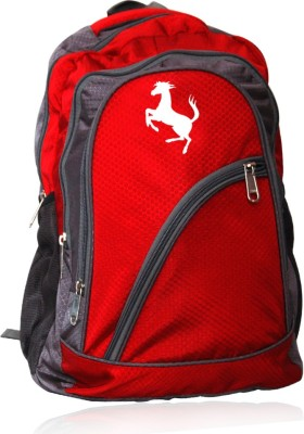 EG PR-0786 50 L Laptop Backpack