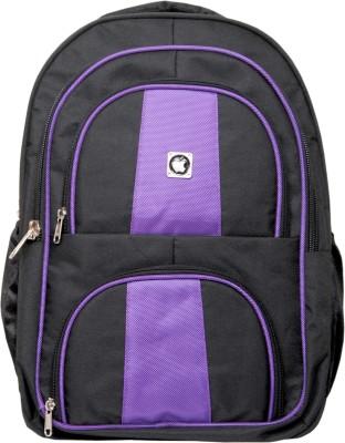 dazzler mojo 10 L Laptop Backpack