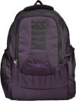 TLC tlc bigbuzz Purple 40 L Backpack (Pu...