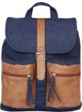 Anekaant Classic 11 L Backpack (Blue)