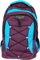 Navigator SureDeal Casual 25 L Laptop Backpack(Blue, Purple)