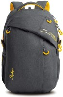 Skybags ION 02 Grey 36 L Backpack