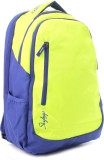 Skybags Backpack (Blue, Green)