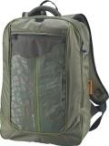 Fastrack Laptop Backpack (Green)