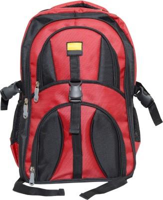 dazzler d02 22 L Laptop Backpack