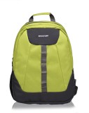 Kooltopp Loretto 35 L Backpack (Green)