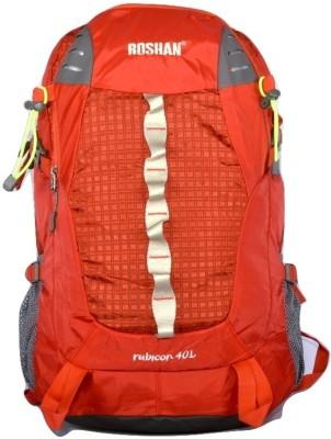 Roshan Laptop Bag 30 L Backpack