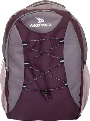 Mayor Bolt 25 L Laptop Backpack