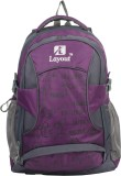 Layout Travel 30 L Backpack (Maroon)