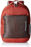 Pronto ENERGY 20 L Backpack (Brown)