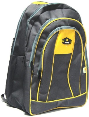 Riddhi Impex Tycoon 7a 20 L Large Backpack