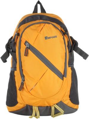 Impulse Support 25 L Laptop Backpack