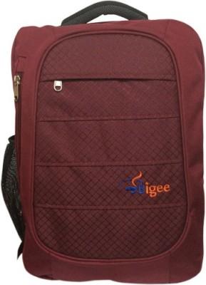 Bigee Men office style 25 L Laptop Backpack