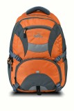 Pazzo Neptune 25 L Backpack (Orange, Gre...