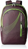 Pronto XION 25 L Backpack (Purple)