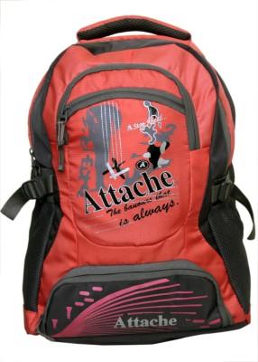 Attache Rocking School Bag (Pink & Grey) 30 L Backpack