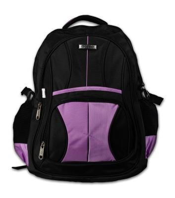 L Star Bkplstar-dc 25 L Laptop Backpack