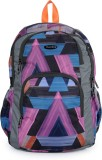 Bendly SP1 Grey 18 L Backpack (Multicolo...