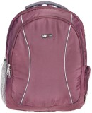 BagsRus Ascent 31 L Laptop Backpack (Pur...
