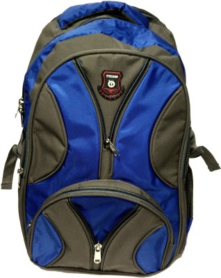 Riddhi Impex Tycoon Grey Series 20 L Backpack