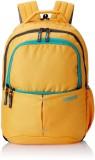 American Tourister Aller Backpack