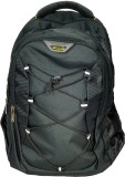 Navigator SureDeal Casual 20 L Backpack ...