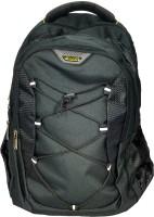 Navigator SureDeal Casual 20 L Backpack(Multicolor)