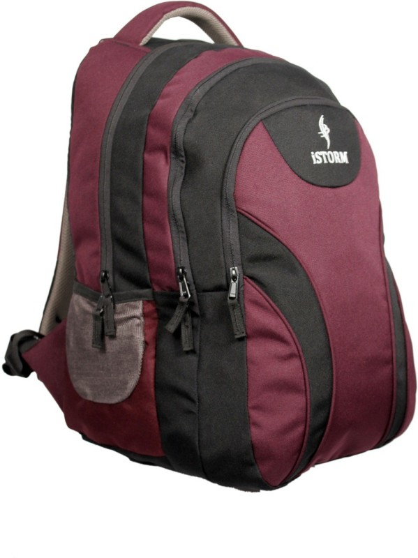 Istorm Oval 30 L Free Size Backpack(Black, Purple)