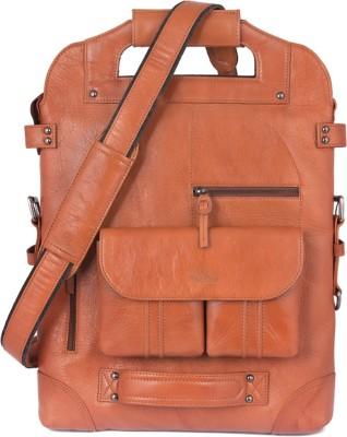 Bearboy Laptop range School Bag