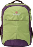 Rr Rainbow D-ZIRE 30 L Backpack (Green, ...
