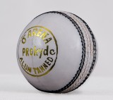 Prokyde Arena White Cricket Ball Cricket...