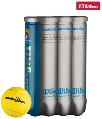 Wilson Hard, Wet, Grass Tennis Ball -   Size: 5,  Diameter: 2.5 cm
