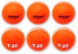 Jaspo T-20 Orange Cricket Ball Cricket B...