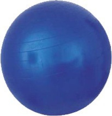 Acco Physio Gym Ball