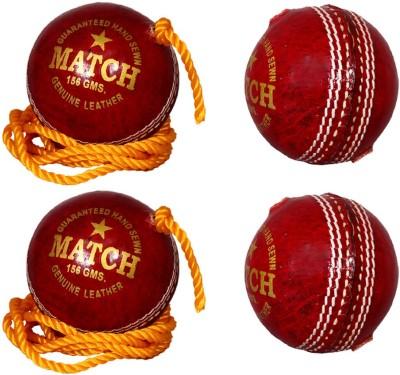 Priya Sports Practice Red Cricket Ball -   Size: 5,  Diameter: 2.5 cm