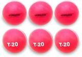 Jaspo T-20 Pink Cricket Ball Cricket Bal...