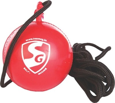 SG I Cricket Ball