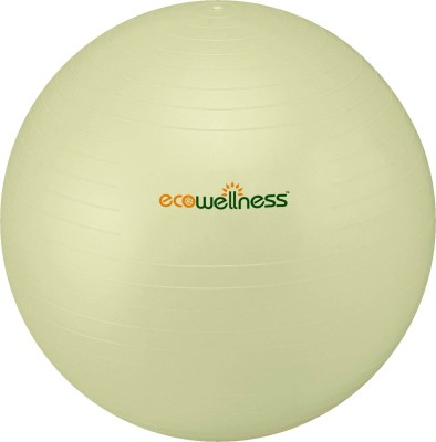 Ecowellness Anti Burst Gym
