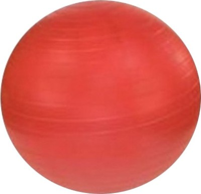 Vector X Gym Ball