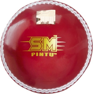 SM Incredible Ball Cricket Ball