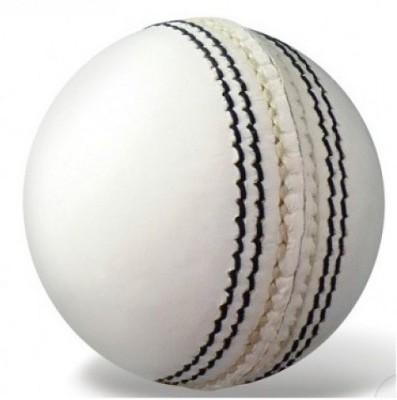 BDM Player Auto Cricket Ball -   Size: 5,  Diameter: 2.5 cm