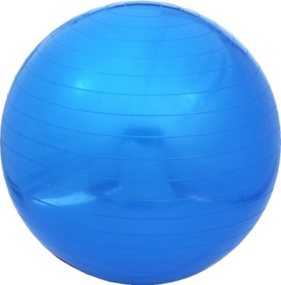 Proline Anti-burst Gym Ball - Diameter: 65 cm(Pack of 1, Blue)