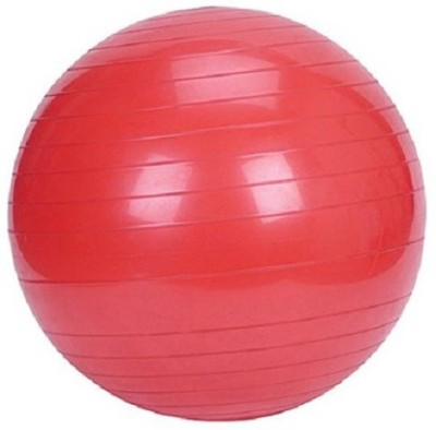 Krazy Fitness Pro Gym Ball